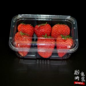 pet材质一次性长方形透明塑料沙拉盒